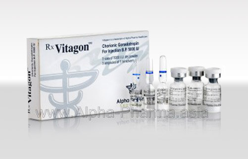 Vitagon-3-vials_wm-300x172